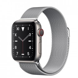 Apple Watch Series 5 Edition 40mm Titanium Case with Milanese Loop (MWQE2+MTU22)